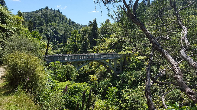 Bridge to Nowhere Tour - Whanganui River Adventures